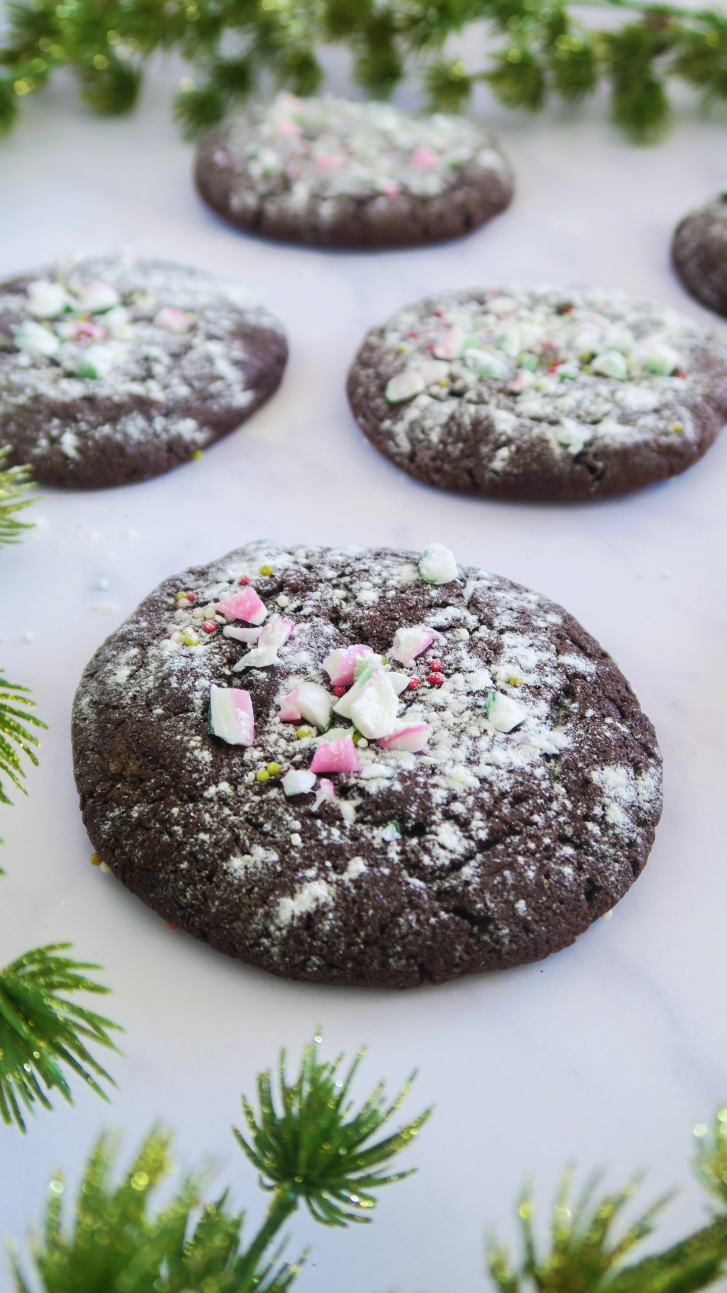 chocolate peppermint cookies close up