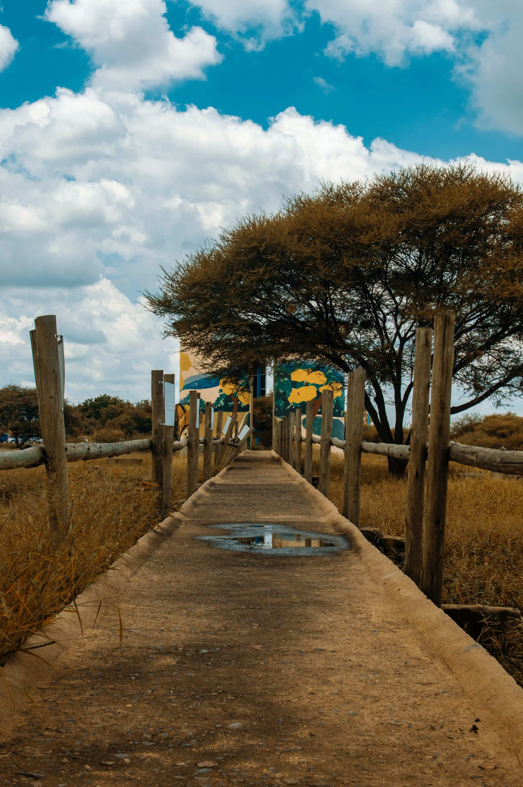 A Guide to Botswana: Food, Culture and Background